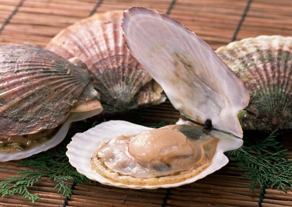 В Большом Камне начнут выращивать морепродукты